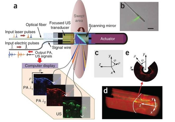 Multispectral optoacoustic tomography - Wikipedia