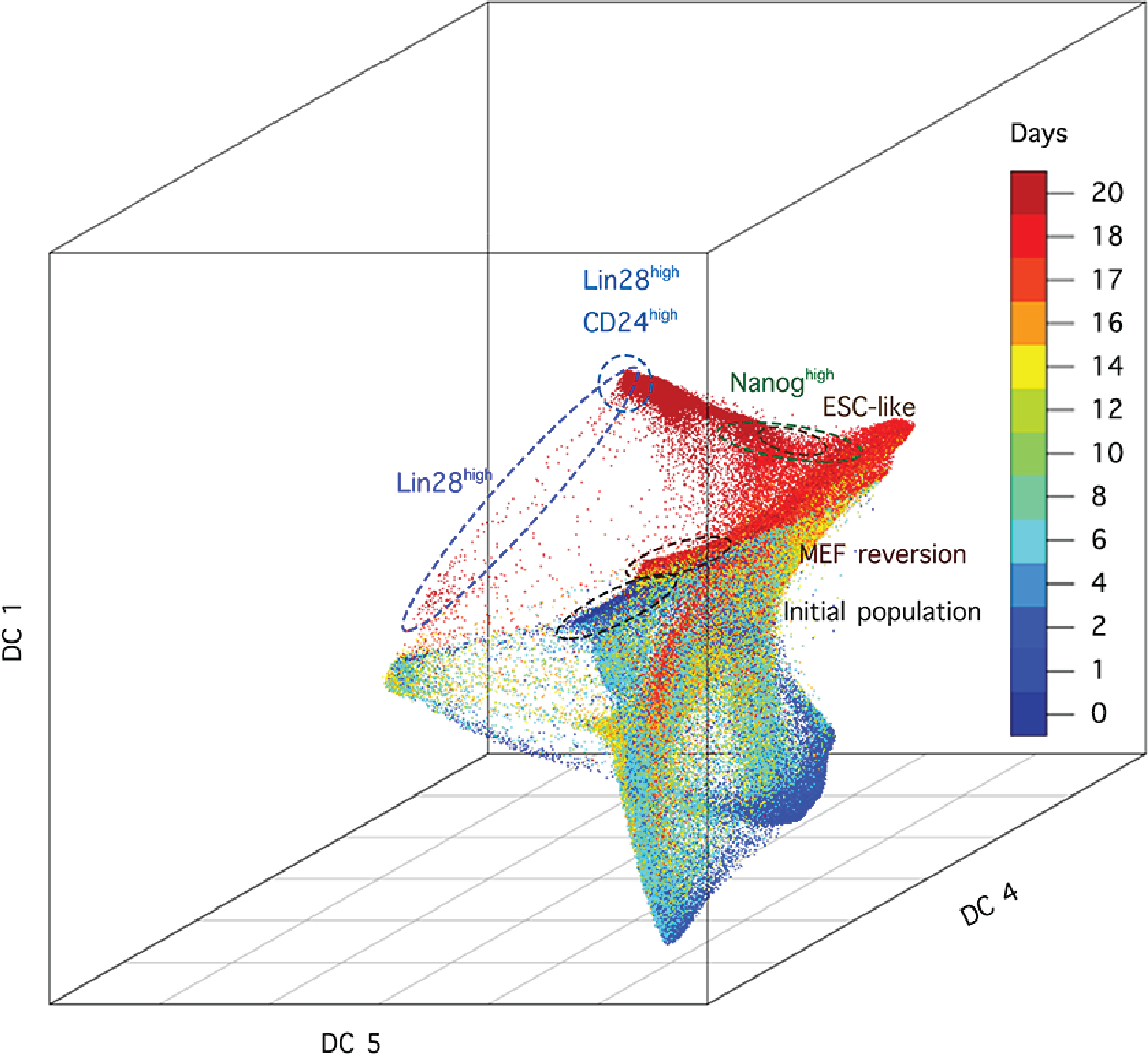 diffusion maps for large scale single cell data in r